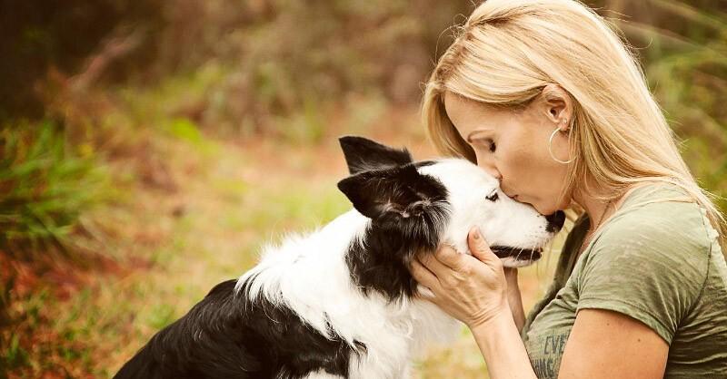 Усыпление собаки на дому позволит попрощаться с питомцем в тихой спокойной обстановке. После усыпления собаки на дому ветеринар забирает тело на кремацию